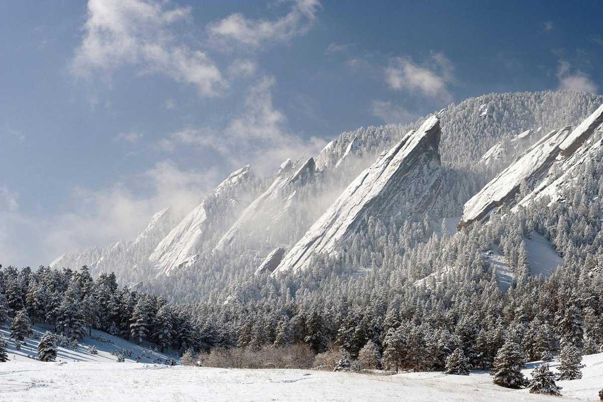 Silver Forest Aspen Colorado Usa