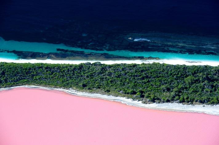 Pink-Lake-Australia-Lake-Hillier1